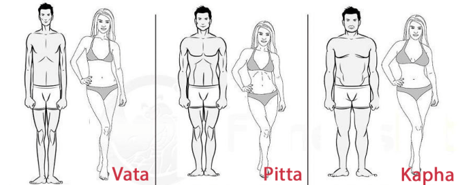 """Résultat de recherche d'images pour """"body vata pitta kapha"""""""