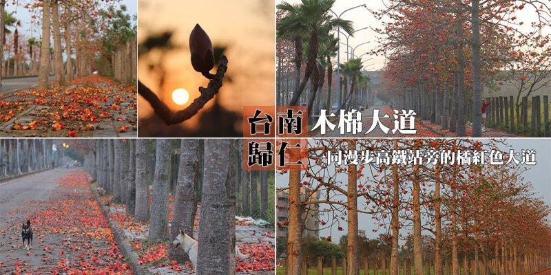 台南 一同漫遊木棉花道,高鐵站旁的橘紅色大道 台南市歸仁區 歸仁十五路木棉花道