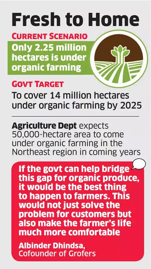 Government may help organic farmers tie up with etailers