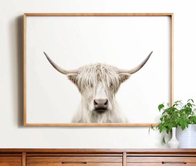 Highland Cow Print Printable Art Cow Art Trendy Wall Art Animal Photography