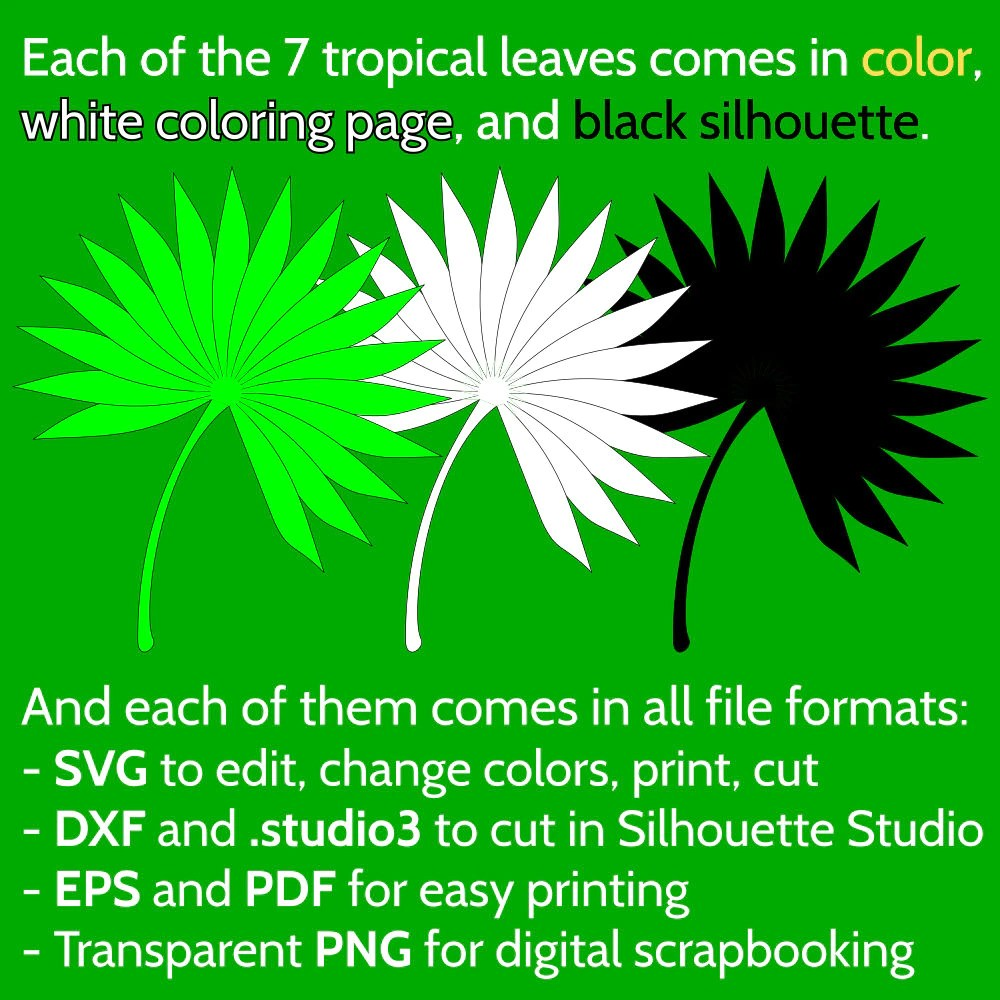 Set Of 7 Jungle Tropical Leaves SVG Files For Cricut Silhouette Monstera Banana Palm Leaf
