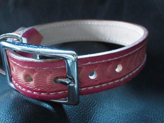 Pink leather collar , dog...