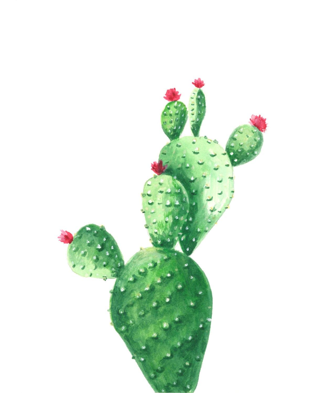 Cactus Watercolor Print Cactus Watercolor Painting Cactus