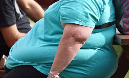 """Expertos europeos avisan de que las políticas de salud pública sobre  obesidad en la UE son """"escasas y poco efectivas"""""""
