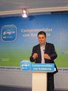 El portavoz del Grupo Popular en el Parlamento andaluz, Carlos Rojas