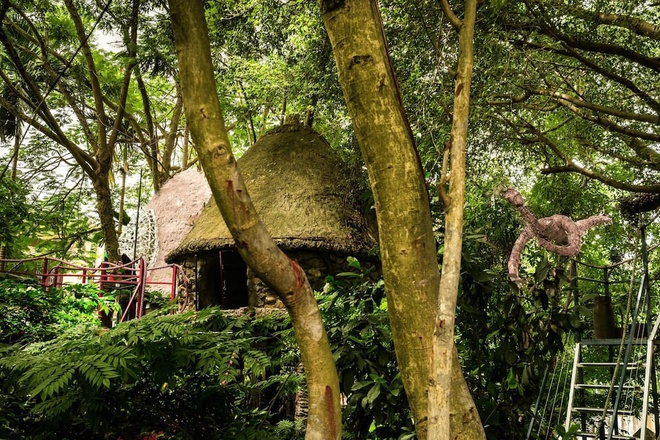 tree-house-hidden-in-hanoi-jungle-enraptures-travelers-1