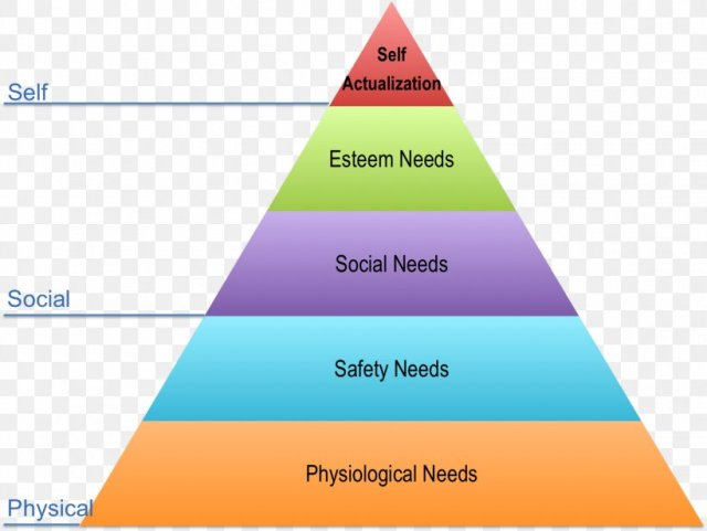 human psychological and physiological needs