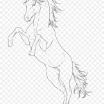 Arabian Horse Line Art Pony Sketch Png 764x1045px Arabian Horse Animal Figure Arm Art Artwork Download