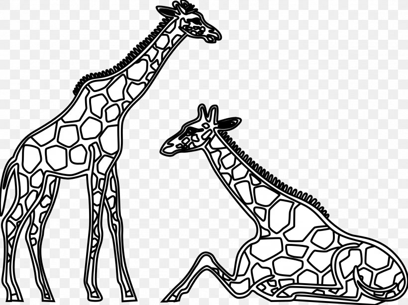 Giraffe Lion Black And White Clip Art Png 2555x1914px Giraffe Black And White Cartoon Color Drawing