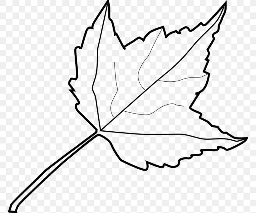 Autumn Leaf Color Outline Clip Art Png 768x683px Leaf Area Artwork Autumn Autumn Leaf Color Download
