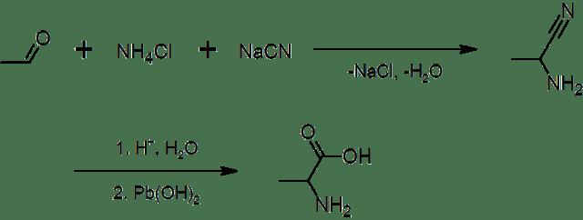 Alanina Molécula Da Semana Fciências
