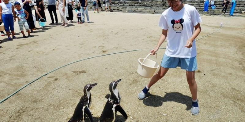 長崎親子遊 長崎企鵝水族館~沙灘餵企鵝體驗 一組只要100日圓