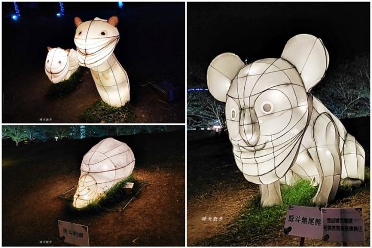 20200213164455 28 - 台中燈會|2020台灣燈會在台中,副展區文心森林公園戽斗星球動物晚上也好拍,還有人造雪喔!