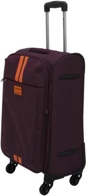 Safari Racin 56 4WH Cabin Luggage - 22 inch(Purple)