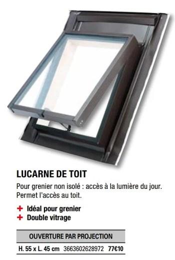 Site Lucarne De Toit En Promotion Chez Brico Depot