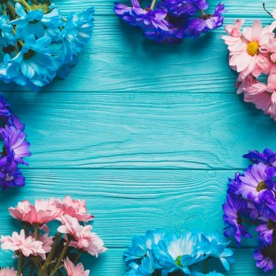 Turquoise Floral Vectors  Photos and PSD files   Free Download Close up colorful flowers