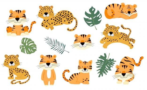 safari party images free vectors