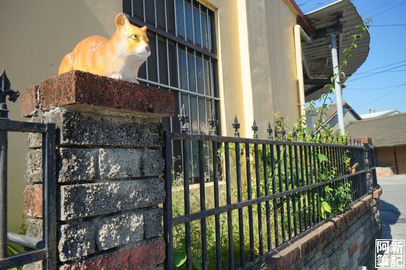 虎尾屋頂上的貓-28