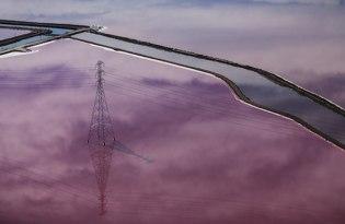 [風景攝影]美國舊金山「夢幻紫色湖」