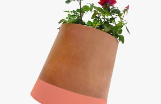 [產品設計]自動向光智慧花盆