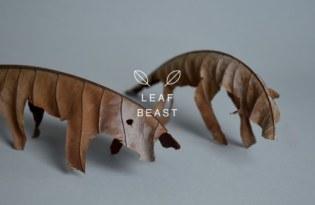[攝影藝術]趣味樹葉小怪獸