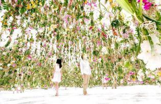 [建築設計]東京科學未來館「綠色森林漂浮花園」