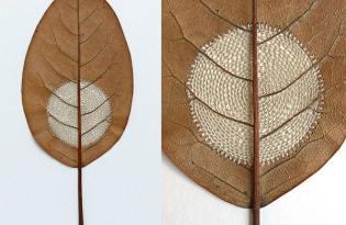[工藝設計]枝葉裁縫視覺藝術