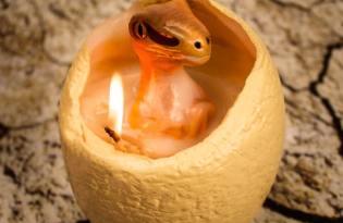 [創意設計]趣味恐龍蛋蠟燭