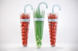 [文創設計]小清新雨傘造型水果包裝