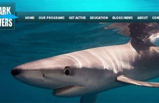 [享公益]SHARK SAVERS國際鯊魚動保團體‧拒絕吃魚翅‧復育鯊魚、魟魚建立保護區