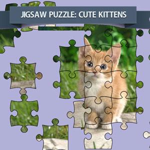 لعبة لعز صورة القطط