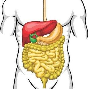 100 de<br /><br /><br />                                                           alimente<br /><br /><br />                                                           miraculoase<br /><br /><br />                                                           pentru<br /><br /><br />                                                           organism,<br /><br /><br />                                                           Pentru ficat