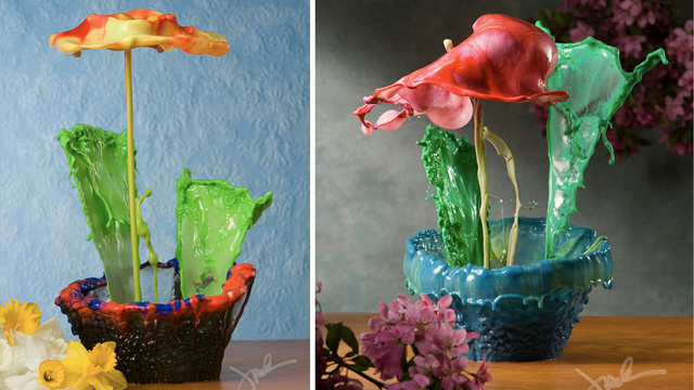 You Won't Believe These Stunning Splashed Paint Flowers Were Created Without Photoshop