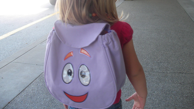 Click here to read Protect Your Valuables From Thieves by Storing Them In Children's Bags