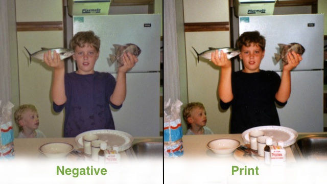 Digitize Old Photos Better with the Negatives