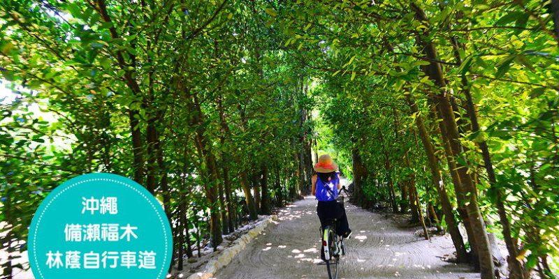 [沖繩避暑景點] 備瀨福木林道(備瀬のフクギ並木)自行車道,享受林蔭下的微風