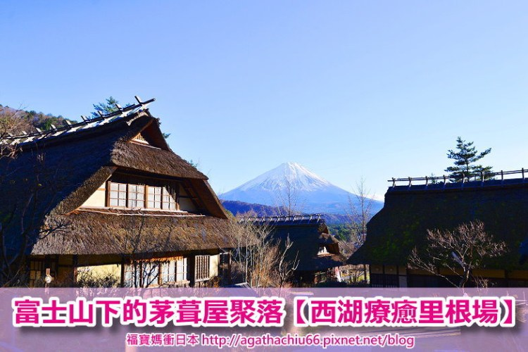 [東京靜岡山梨富士山景點] 西湖療癒里根場 西湖いやしの里根場(含西湖週遊巴士綠線交通資訊),富士山腳下的茅葺屋聚落