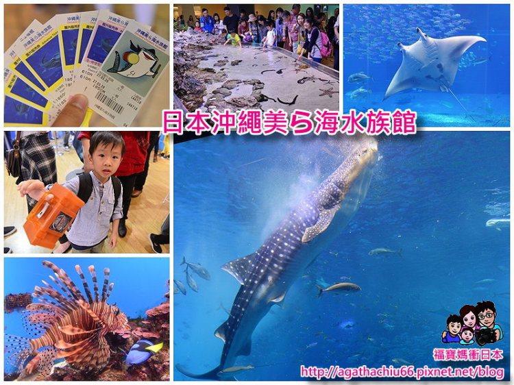 [日本沖繩必玩景點] 沖繩美ら海水族館~分享輕鬆觀賞精彩餵食秀小撇步!
