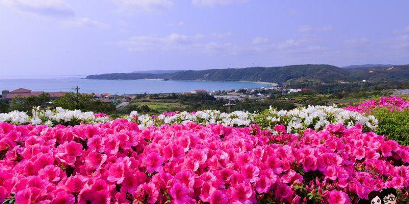 【冬天去沖繩10個理由】冬遊沖繩當個省錢達人,行程 景點 飯店 泡湯 自駕 購物 超市 藥妝店