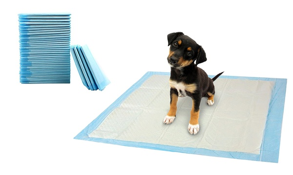 1 ou 2 paquets de 6 tapis educateurs pour chien ultra absorbants