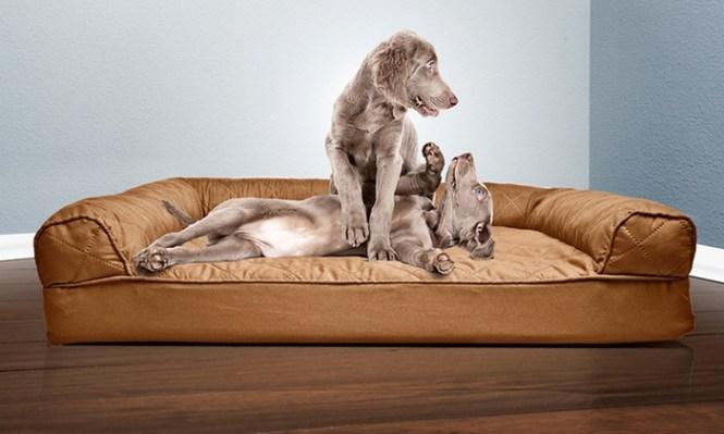 Sofa Style Orthopedic Pet Bed Mattress