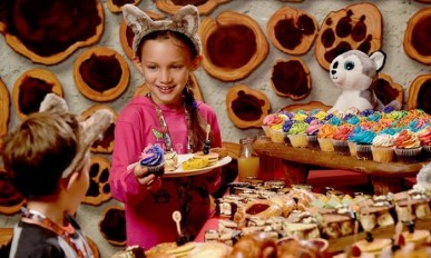 Up to 34% Off Kids' Birthday Party Package at Great Wolf Lodge