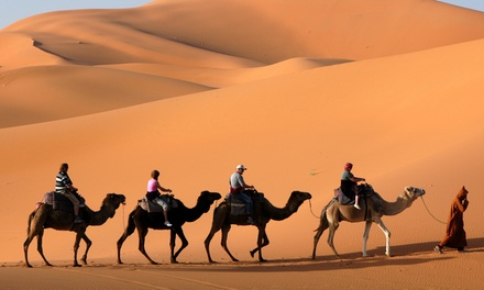 Six Hour Dubai VIP Safari with Private Pick up for One, Two or Six with Red Dunes Tourism