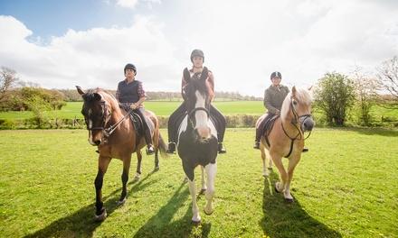 Passeggiata a cavallo più colazione oppure brunch a La Marca Ranch (sconto 78%)