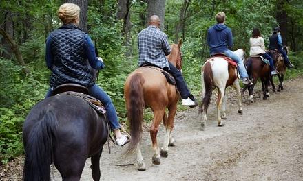 Fino a 10 lezioni di equitazione o passeggiata a cavallo con merenda alla Cascina Vittoria (sconto fino a 75%)