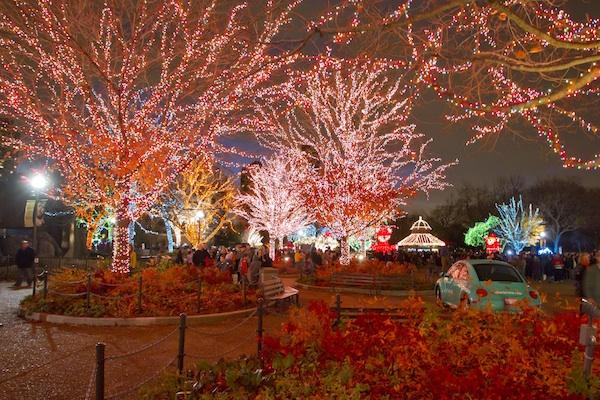 Brookfield Zoo Lights