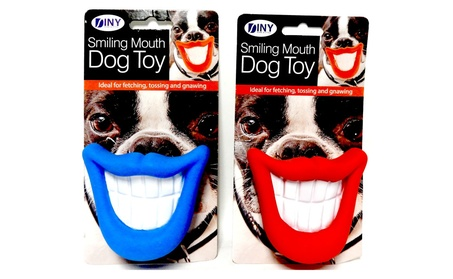 (2 Pack) Smiling Dog Squeaky Fetch Dog Toy