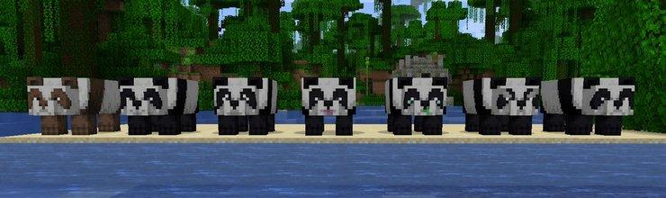 Panda Minecraft Özellikleri