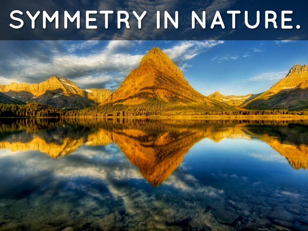 Symmetry By Signy Thordarson