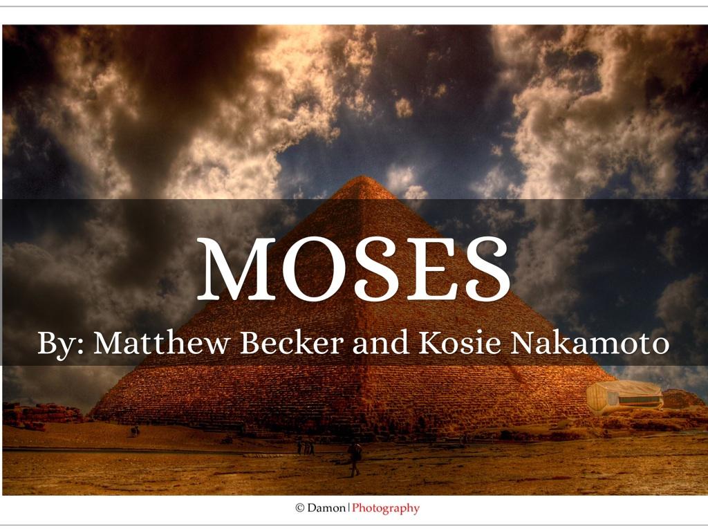 Mosses By Matthew Becker